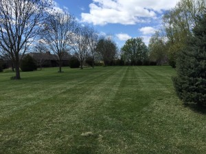 Lawn Mowing In Smithville MO